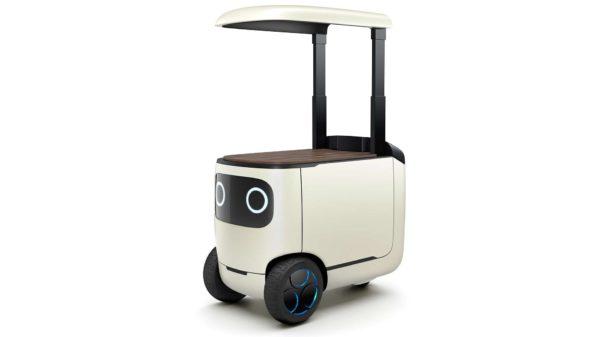 Honda RoboCas Concept